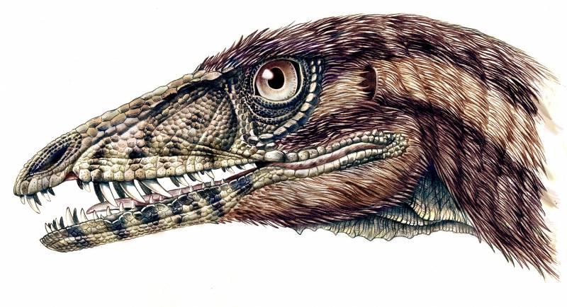 El hallazgo de un nuevo dinosaurio arroja luz sobre su evolución