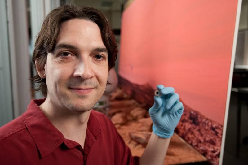 El profesor de geociencia Thomas Lapen, sosteniendo una muestra del meteorito marciano.