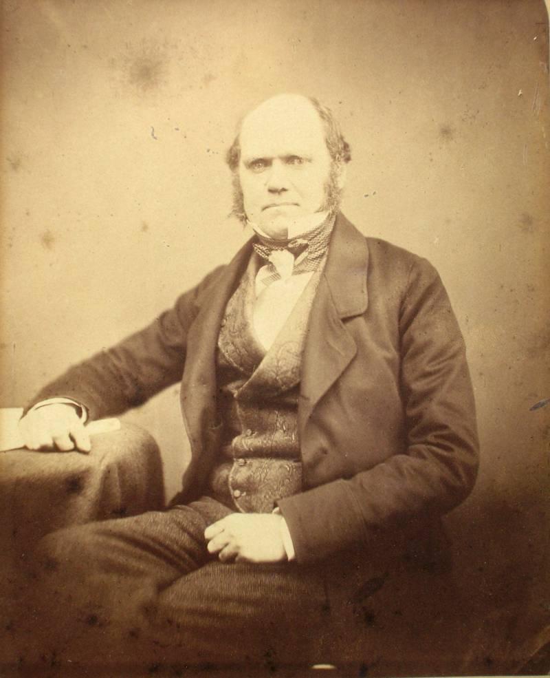La endogamia es la culpable de las enfermedades de la familia de Darwin