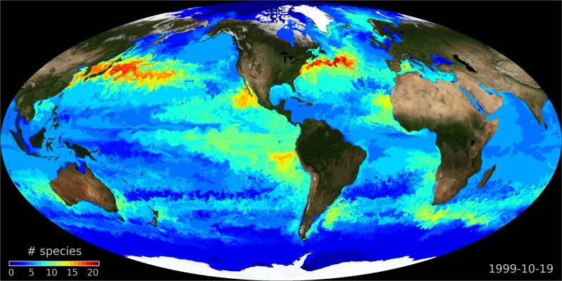 Presentan el mapa de distribución de los microorganismos marinos