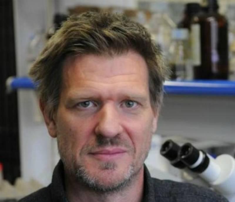 El profesor David Bueno del Departamento de Genética de la UB.