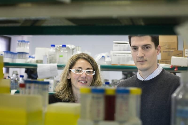 Identifican nuevas dianas terapéuticas para frenar las metástasis de cáncer de mama a pulmón