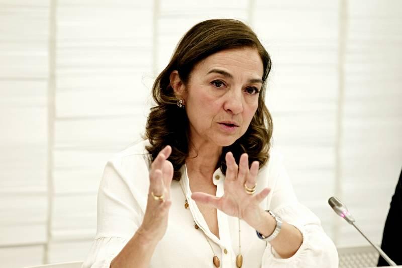 Carmen Vela, en la rueda de prensa de esta mañana. Imagen: SINC.
