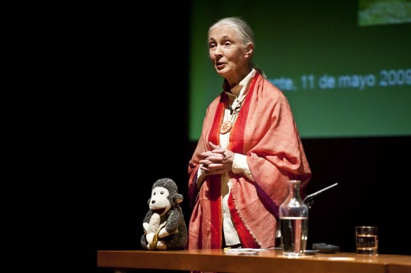 Jane Goodall, doctora Honoris Causa por la Universidad de Alicante