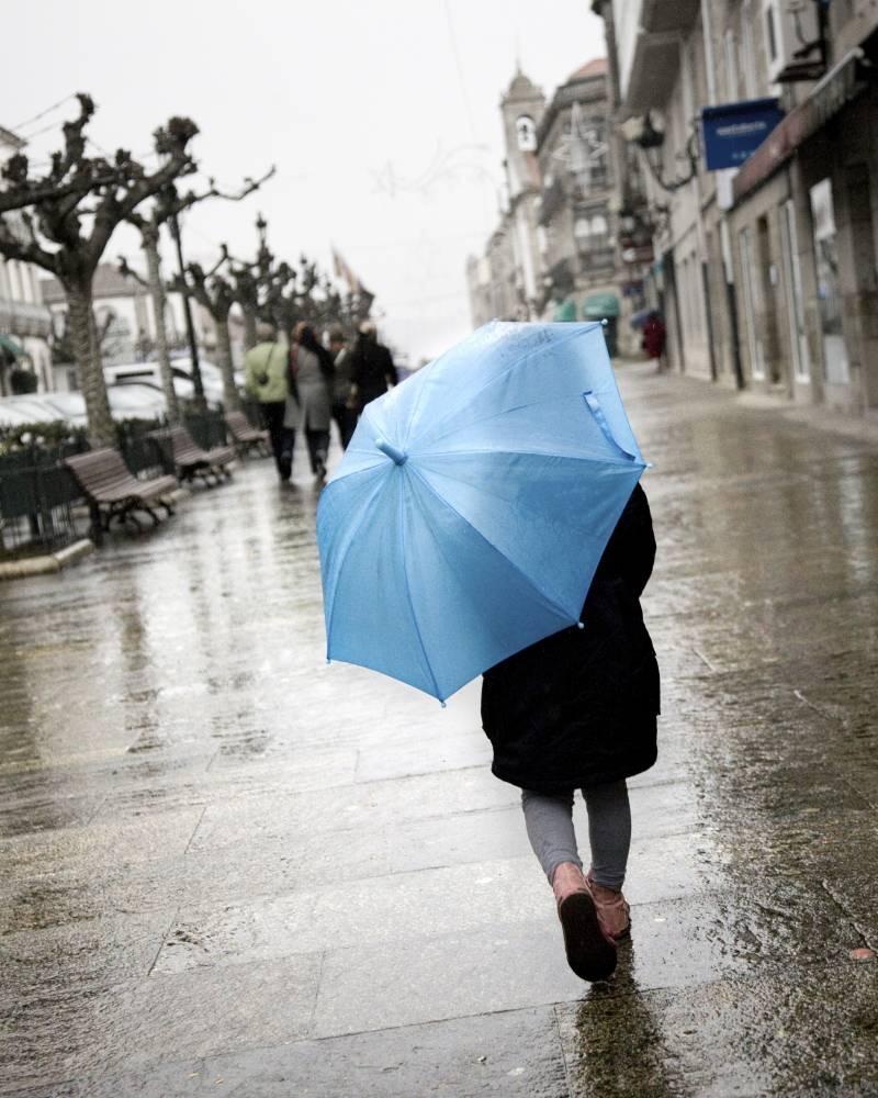 La prevalencia de la dermatitis es mayor en ciudades húmedas y con altas precipitaciones