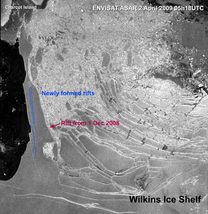 Se rompe el puente de hielo que unía a la plataforma Wilkins con la Antártida