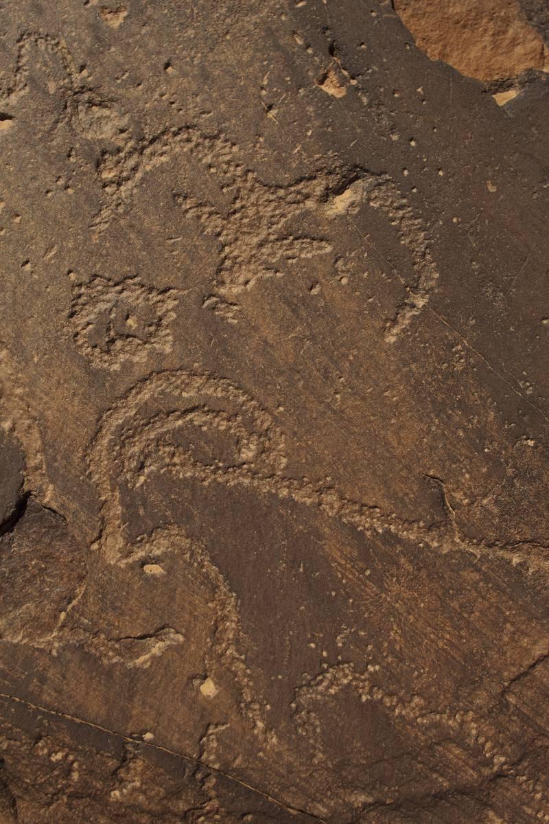 En estos grabados rupestres de Tachokalt 1 aparecen dos cápridos representados de frente y perfil. Autor : Proyecto Tamanart.