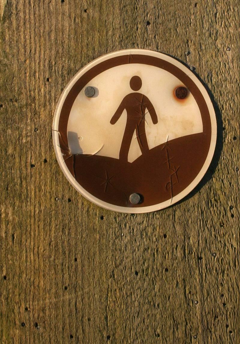Las virtudes del open access para la investigación científica