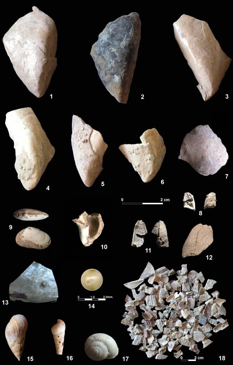 Los neandertales ibéricos comían marisco hace 150.000 años