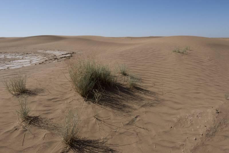 Un nuevo índice de sequía tiene en cuenta el efecto del calentamiento global