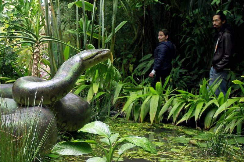 Visitantes observan una réplica de la Titanoboa en el Jardín Botánico de Bogotá (Colombia). / Efe