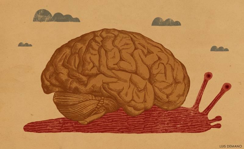 La memoria se vuelve menos eficaz en las fases tempranas del Alzheimer