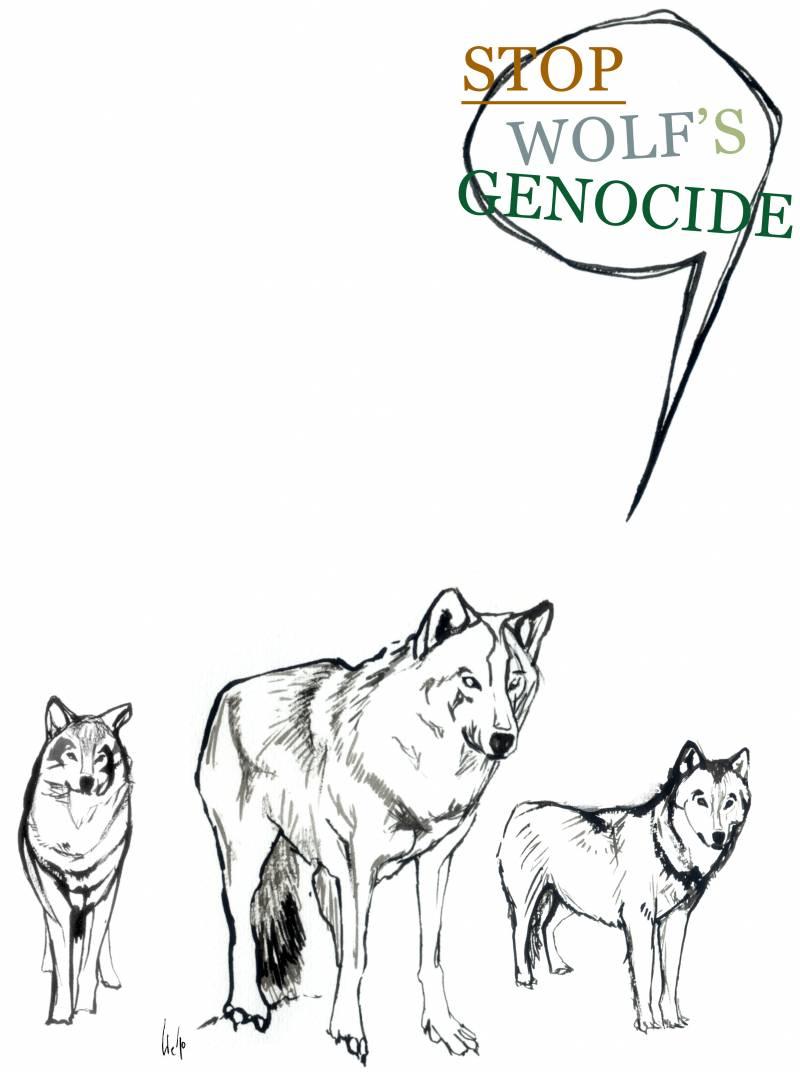 Proponen introducir poblaciones de lobos controladas para restablecer ecosistemas