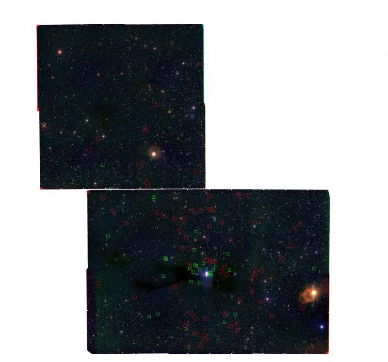 Descubierta una nueva población de estrellas y enanas marrones en Lupus