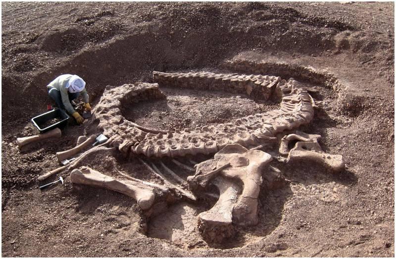 Excavación del saurópodo Spinophorosaurus nigerensis en Níger.