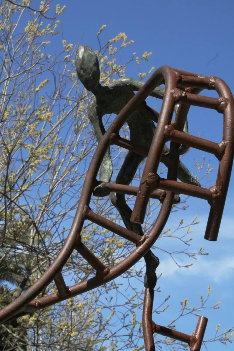 El Real Jardín Botánico presenta la exposición Aequilibrium