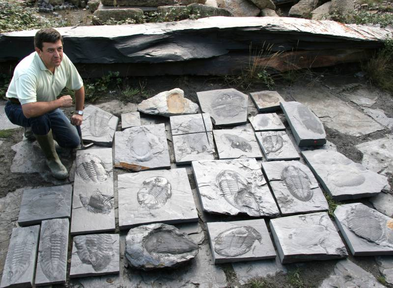 Encuentran un yacimiento de trilobites gigantes en Portugal