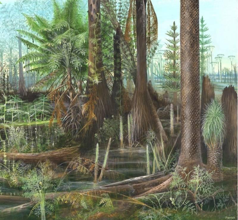 Las primeras selvas tropicales de la Tierra.