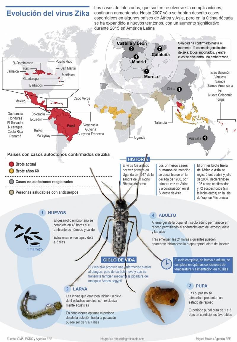 Infografía que muestra la expansión del virus zika. / Efe