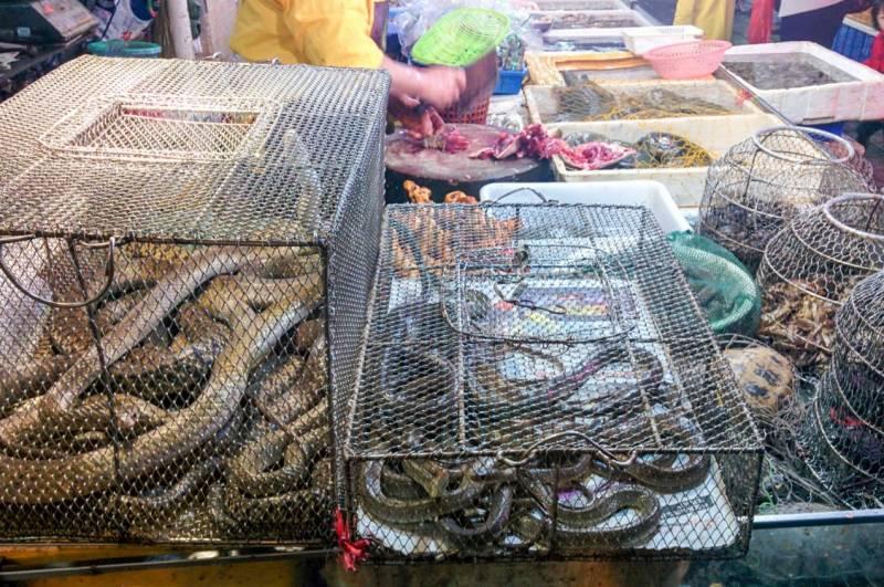 Comercio de animales salvajes en un mercado chino