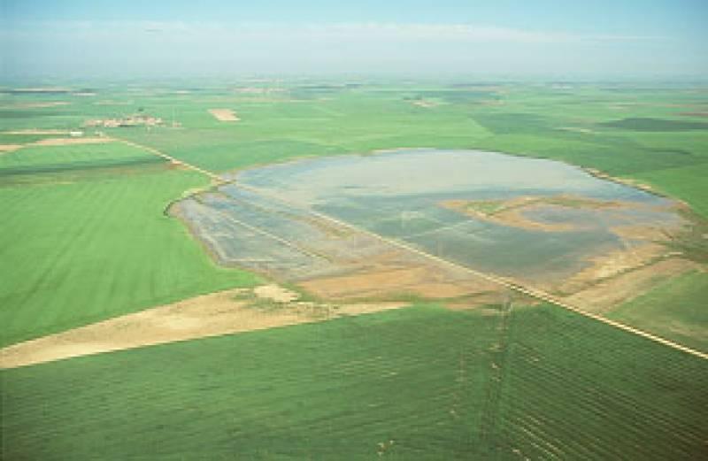 El humedal es el segundo enclave más importante de la Península Ibérica para la invernada del ánsar común.