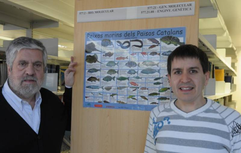 Los expertos Adolfo de Sostoa y Alberto Maceda Veiga, del Grupo de Investigación Consolidado de Biología de Vertebrados de la UB.