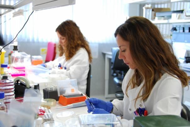 Desde 2015, el laboratorio cuenta con más de 700 cepas secuenciadas. / María Marín