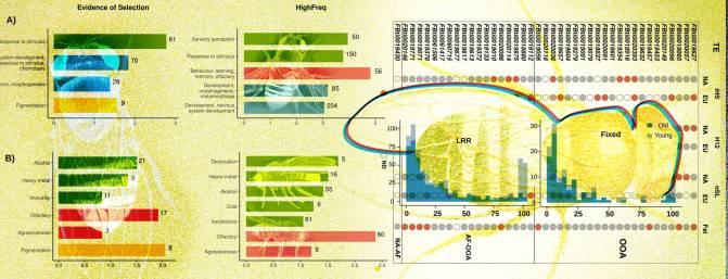 Ilustración basada en los datos analizados en el estudio de González / Roberto Torres