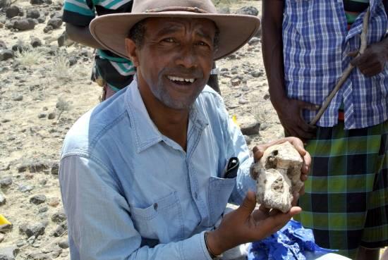 Yohannes Haile-Selassie con el cráneo MRD / Museo de Historia Natural de Cleveland