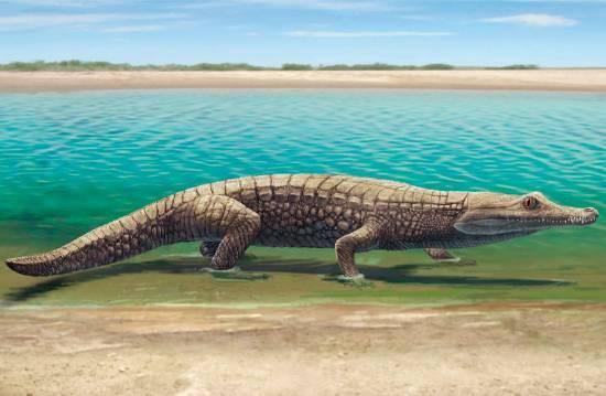 Recreación de un cocodrilo en el entorno de Las Hoyas / Ó. Sanisidro