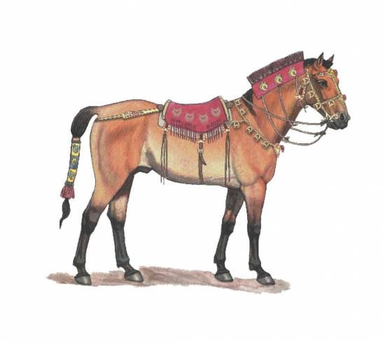 Recreación de los caballos de los escitas sacrificados en Berel, Kazakhstan, hace unos 2.300 años / Carla Schaffer / Zainolla Samashev / AAAS