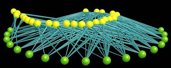 Representación de red ecológica. /CSIC