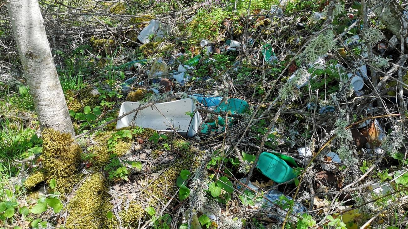 2 1 - En España mayor parte de los espacios naturales están afectados por contaminación asociada a la actividad humana ( Basuraleza )