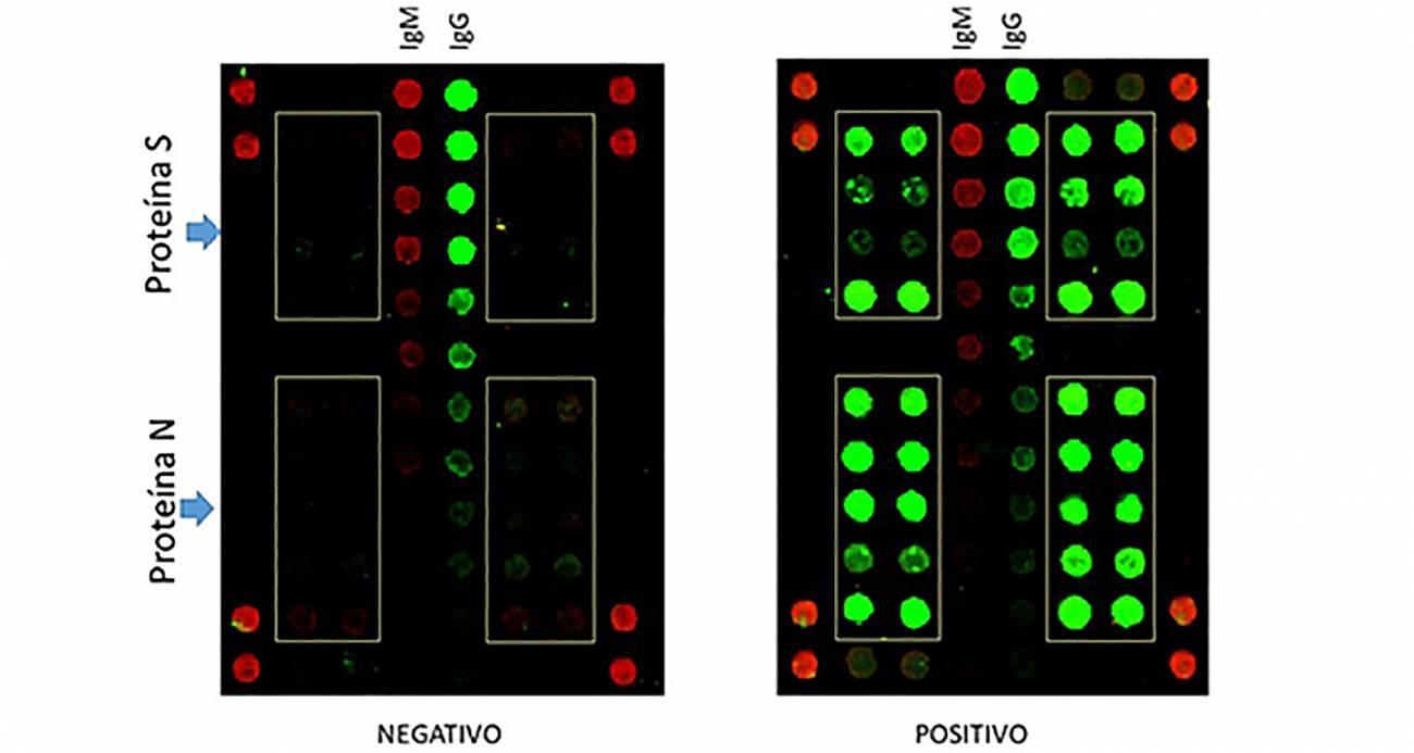 Los biochips desarrollados para detectar vida en otros planetas se ha aplicado ahora en un ensayo serológico para detectar COVID-19 a través de anticuerpos