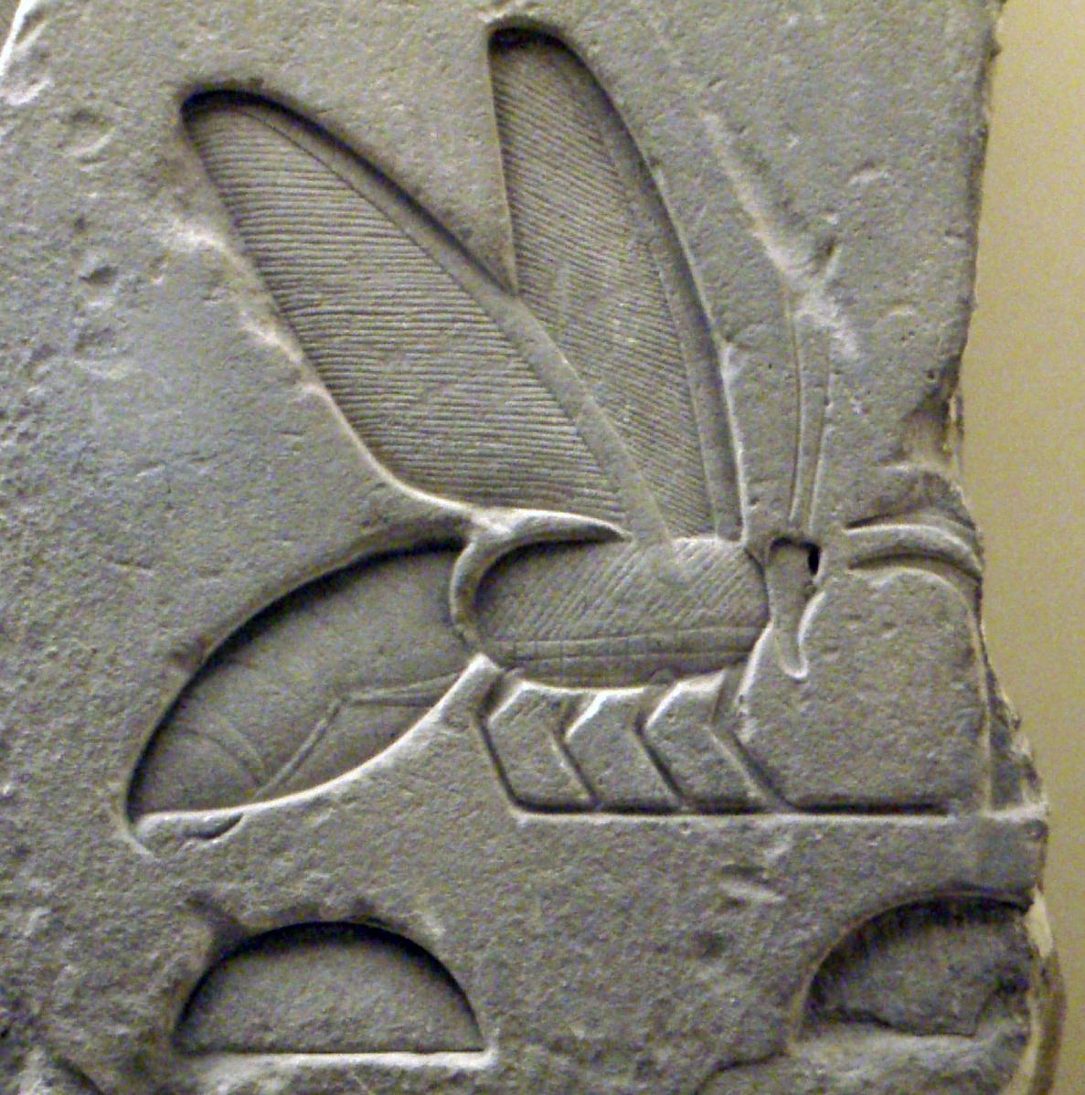 jeroglífico abeja