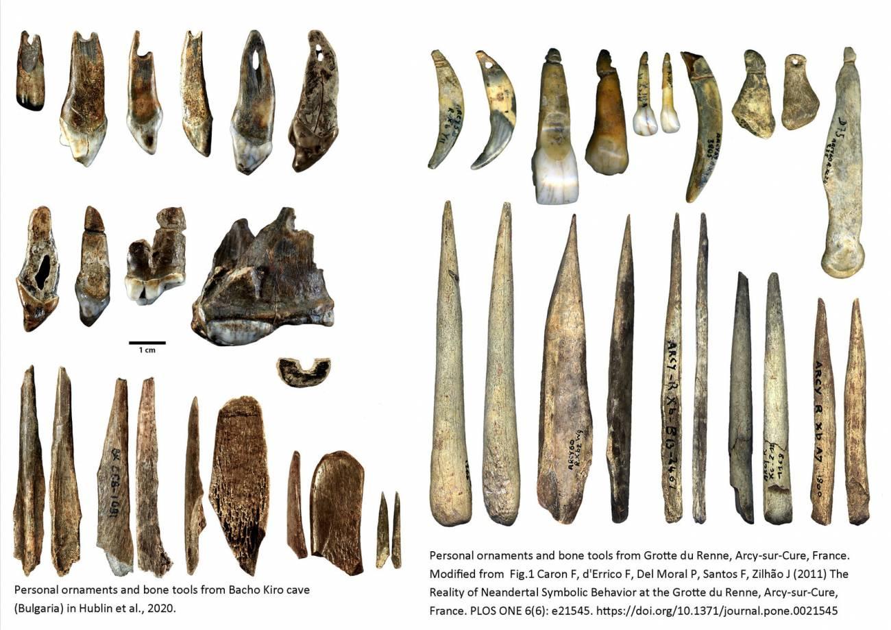 Adornos de humanos modernos y neandertales