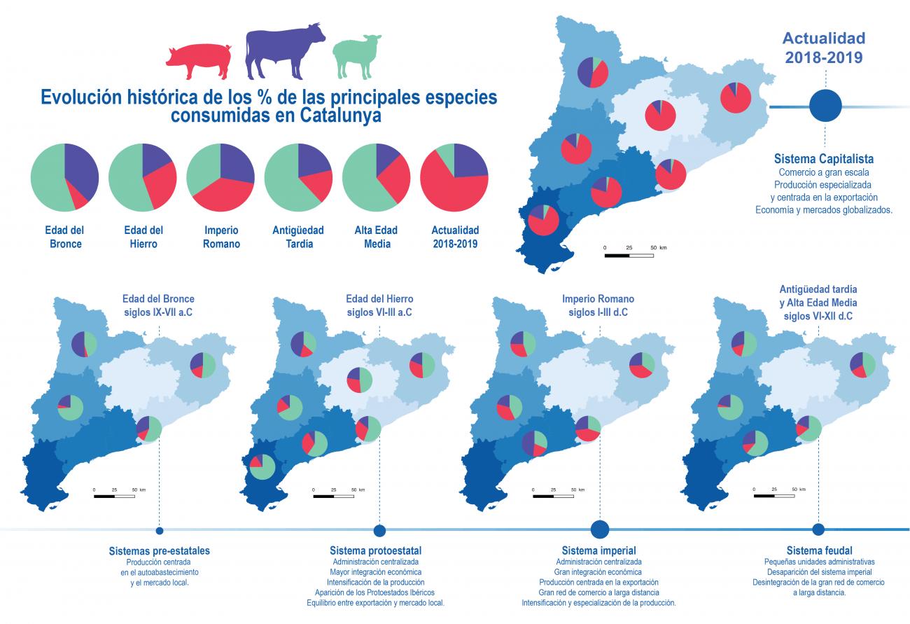 Mapa con la evolución de las principales especies ganaderas consumidas a lo largo de diferentes sistemas políticos, territorios y periodos históricos de Cataluña. / Ariadna Nieto Espinet