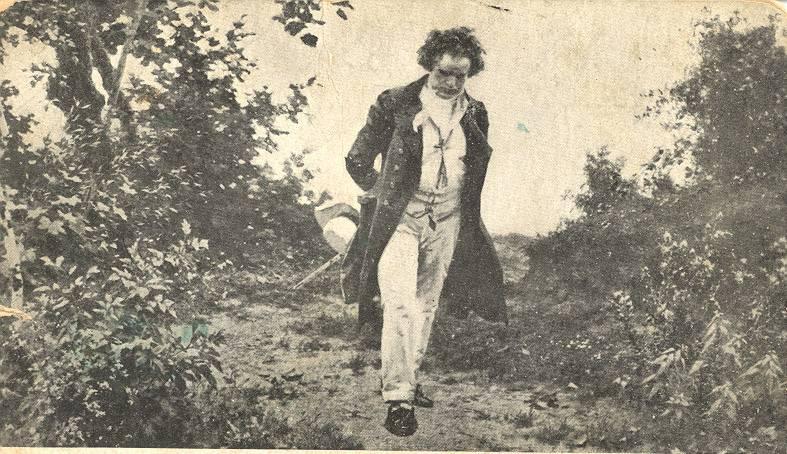 Beethoven de paseo