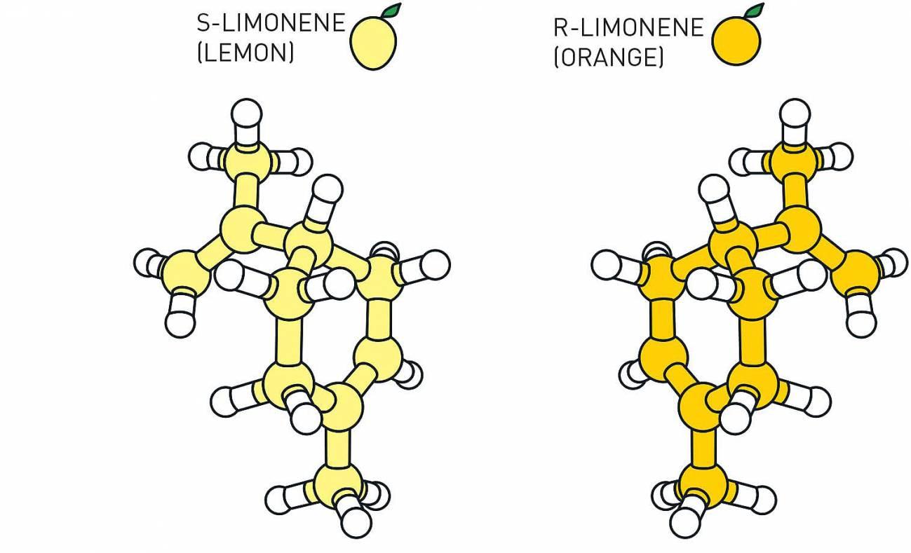 Isómeros del Limoneno