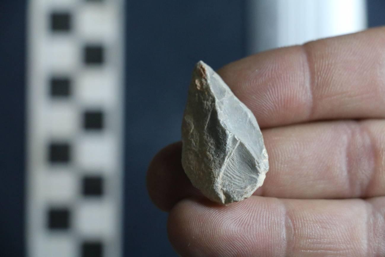 Herramienta de piedra