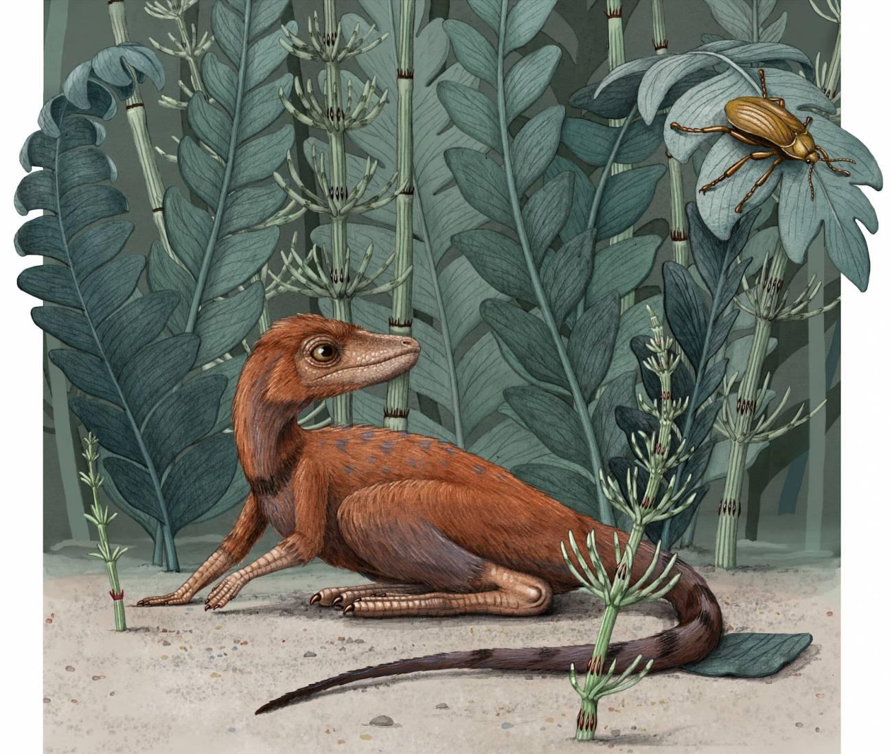 Descubierto un minúsculo pariente de los dinosaurios