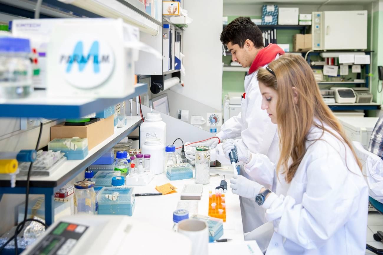 laboratorio CNB