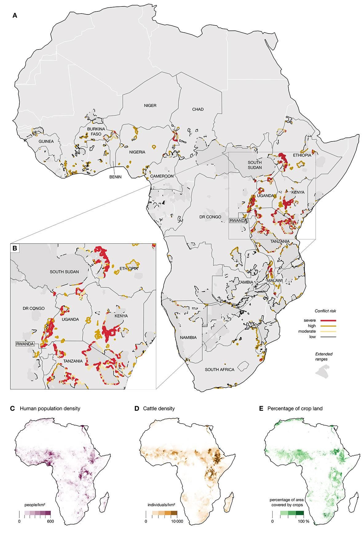 Mapa de conflictos - Mapa  señala dónde en África  se producen los conflictos entre leones, elefantes y humanos