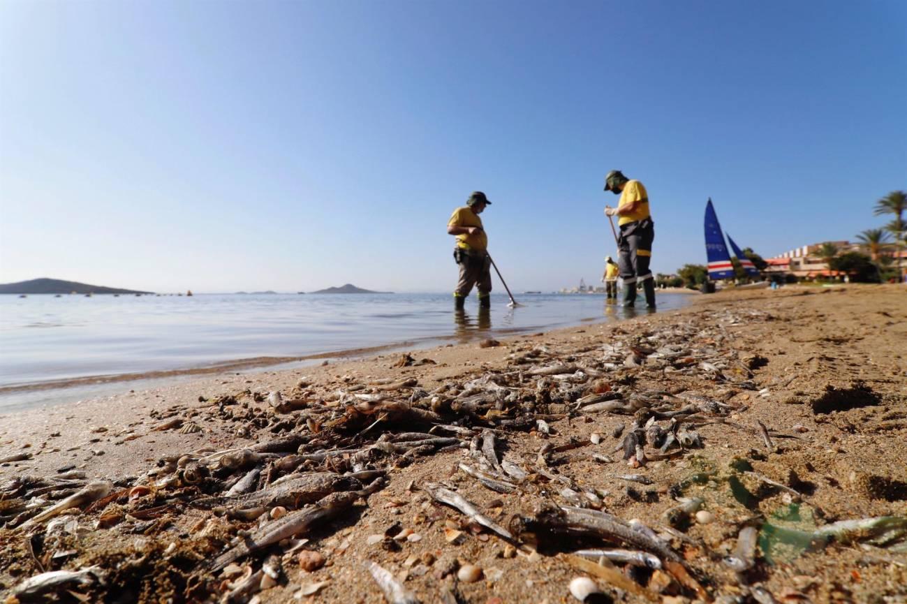 Mar Menor - Julia Martínez Fernández : No se puede cambiar la situación del Mar Menor de un día para otro, ni siquiera de un año para otro