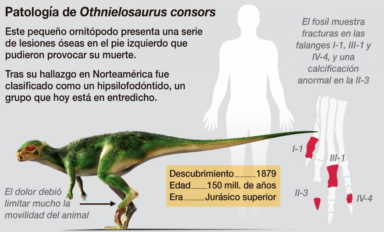 Dinosaurio bípedo Othnielosaurus