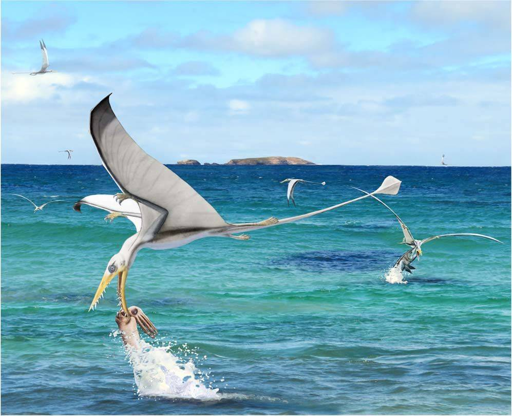 Rhamphorhynchus atrapando a un Plesioteutide. / Wikipedia