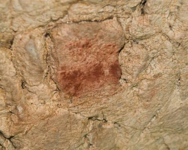 Motivo pictórico de la cueva de El Buxu. Imagen: Antonio Hernanz.