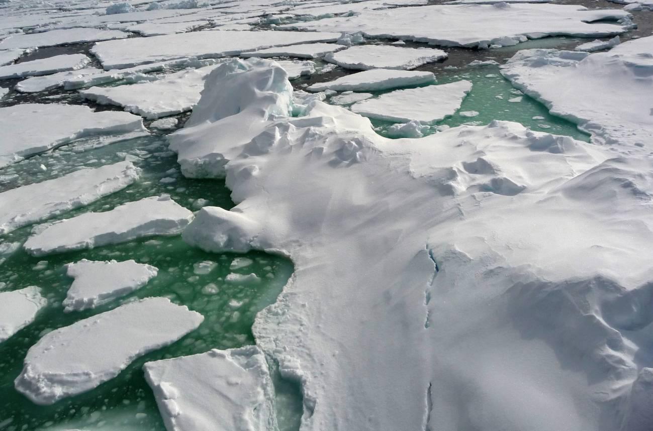 Durante el invierno ártico al norte de Canadá, los investigadores descubrieron que las arqueas utilizan un atajo para obtener el amonio que necesitan. Imagen: CSIC.