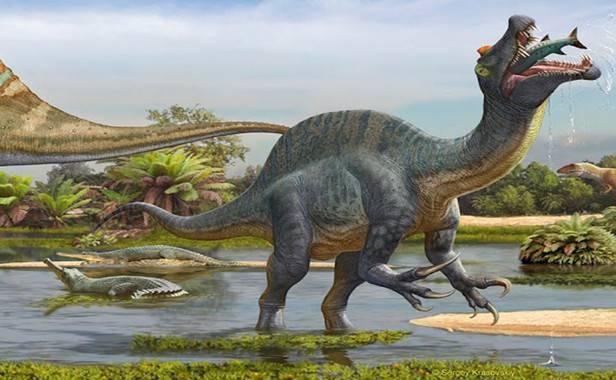 Un Spinosaurus se alimentan de peces en el Sureste de Marruecos hace unos 100 millones de años / Ilustración de Sergey Krasovskiy