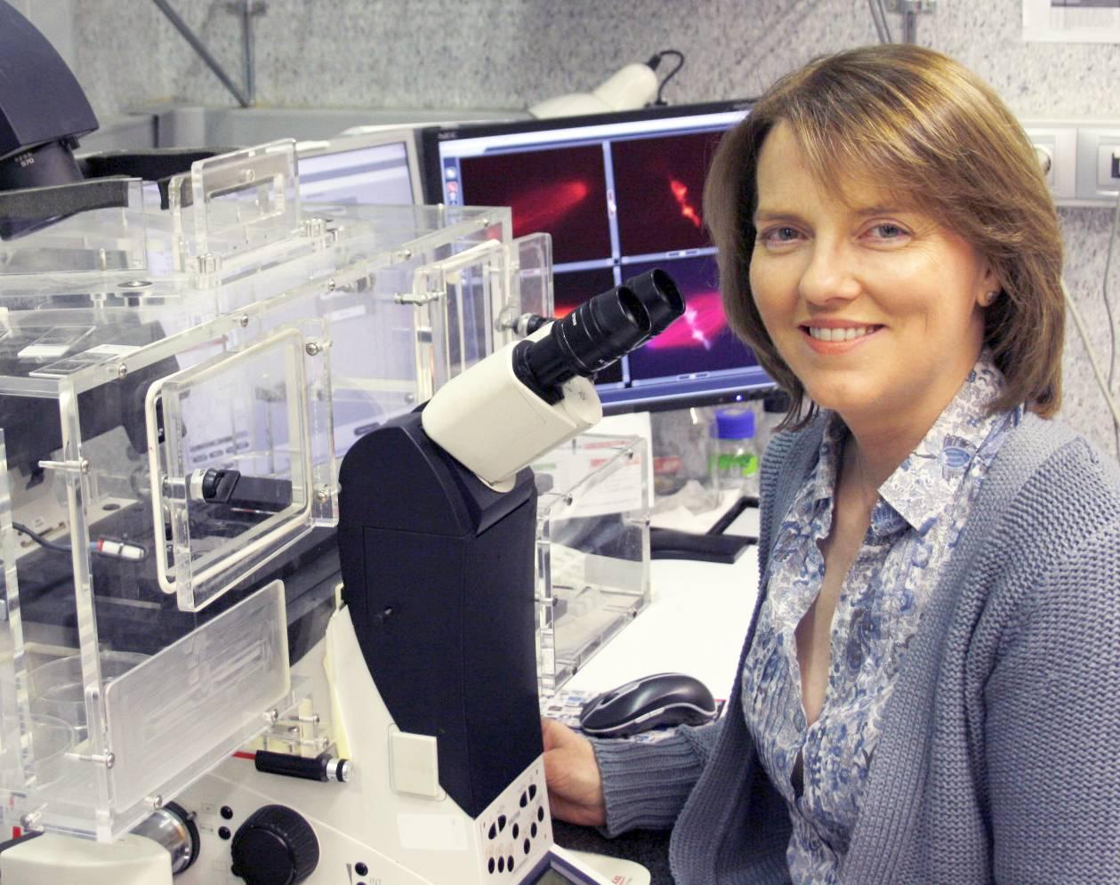 La bióloga celular Isabel Vernos en su laboratorio el Centro de Regulación Genómica (CRG). / CRG.